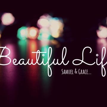 Samuel Burgess - Beautiful Life