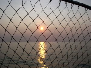 Lake_Erie_Sunset_with_fish_net